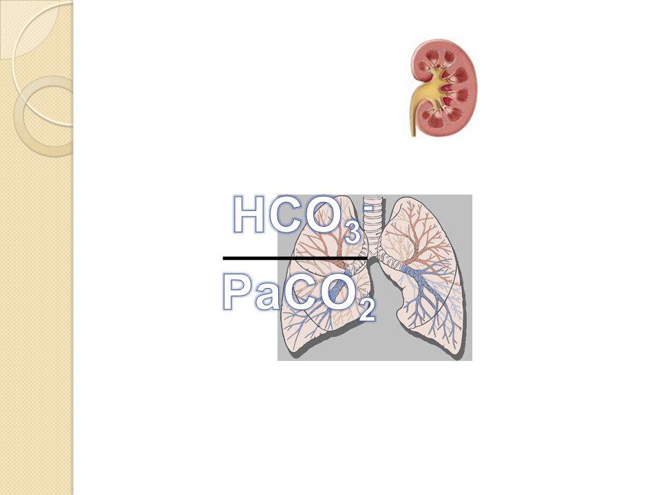 HCO3- PaCO2