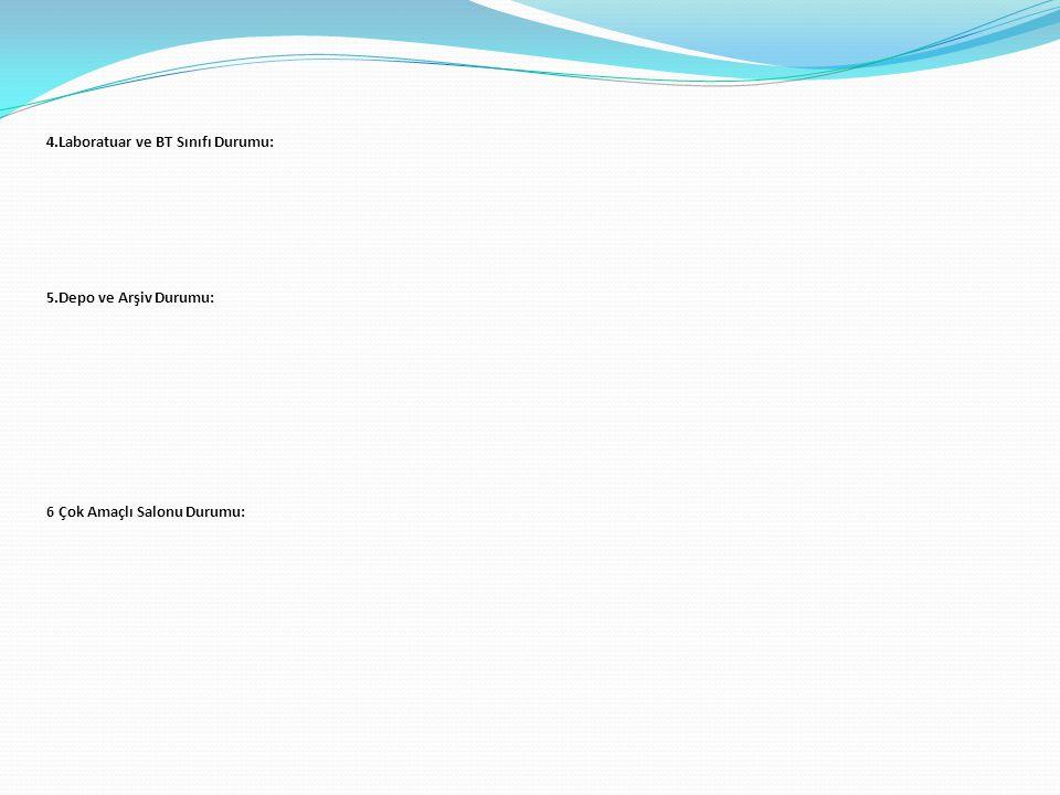 4.Laboratuar ve BT Sınıfı Durumu: