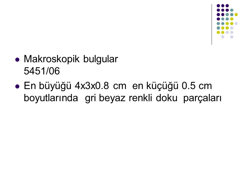 Makroskopik bulgular 5451/06