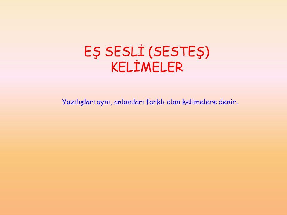 EŞ SESLİ (SESTEŞ) KELİMELER