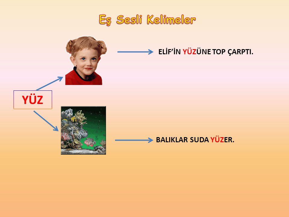 Eş Sesli Kelimeler ELİF'İN YÜZÜNE TOP ÇARPTI. YÜZ BALIKLAR SUDA YÜZER.