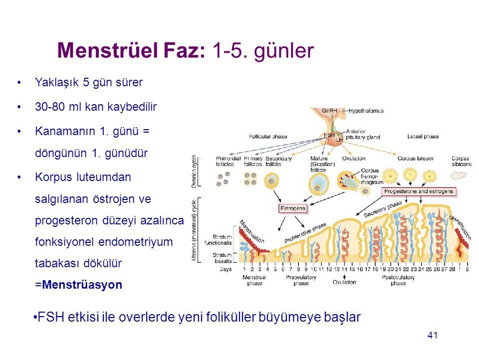 Menstrüel Faz: 1-5. günler