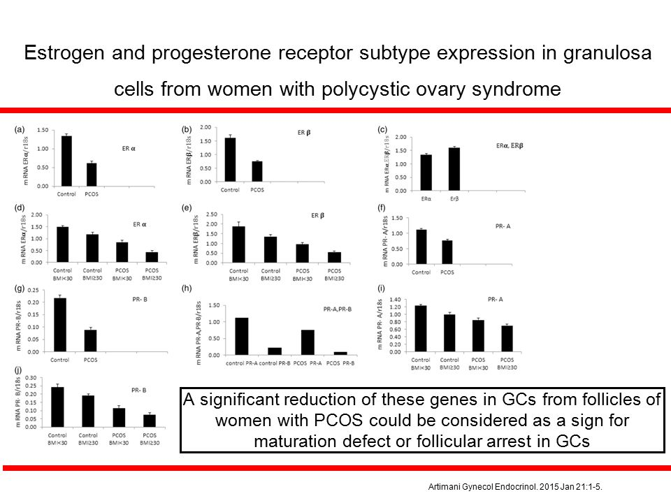 Estrogen and progesterone receptor subtype expression in granulosa