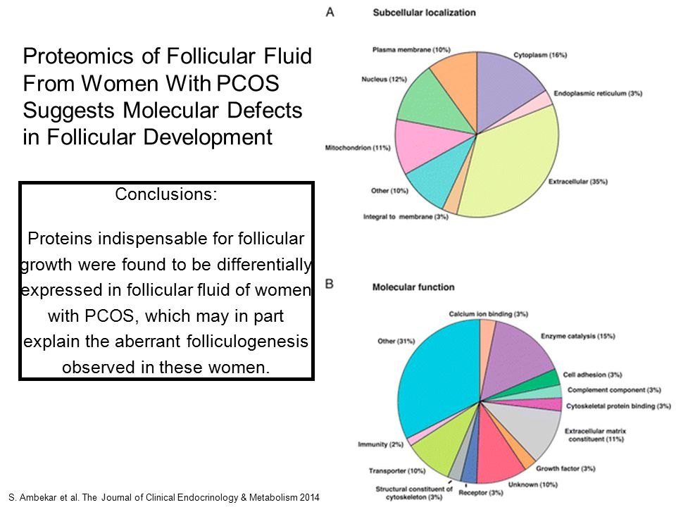 Proteomics of Follicular Fluid From Women With PCOS Suggests Molecular Defects in Follicular Development