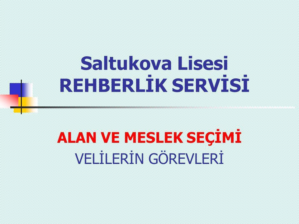 Saltukova Lisesi REHBERLİK SERVİSİ