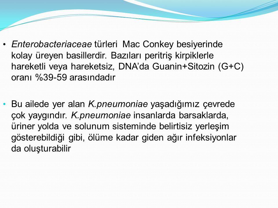 Enterobacteriaceae türleri Mac Conkey besiyerinde kolay üreyen basillerdir. Bazıları peritriş kirpiklerle hareketli veya hareketsiz, DNA'da Guanin+Sitozin (G+C) oranı %39-59 arasındadır