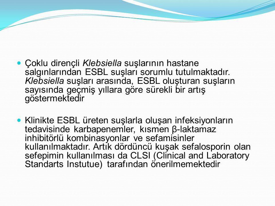 Çoklu dirençli Klebsiella suşlarının hastane salgınlarından ESBL suşları sorumlu tutulmaktadır. Klebsiella suşları arasında, ESBL oluşturan suşların sayısında geçmiş yıllara göre sürekli bir artış göstermektedir