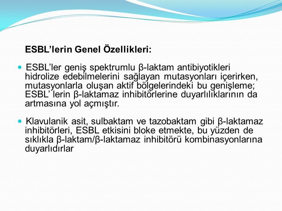 ESBL'lerin Genel Özellikleri: