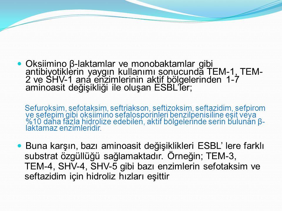 Oksiimino β-laktamlar ve monobaktamlar gibi antibiyotiklerin yaygın kullanımı sonucunda TEM-1, TEM-2 ve SHV-1 ana enzimlerinin aktif bölgelerinden 1-7 aminoasit değişikliği ile oluşan ESBL'ler;