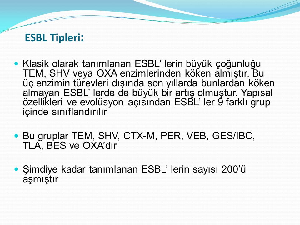 ESBL Tipleri: