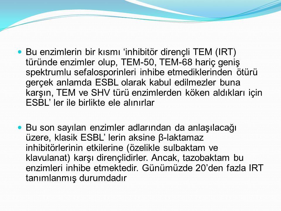 Bu enzimlerin bir kısmı 'inhibitör dirençli TEM (IRT) türünde enzimler olup, TEM-50, TEM-68 hariç geniş spektrumlu sefalosporinleri inhibe etmediklerinden ötürü gerçek anlamda ESBL olarak kabul edilmezler buna karşın, TEM ve SHV türü enzimlerden köken aldıkları için ESBL' ler ile birlikte ele alınırlar