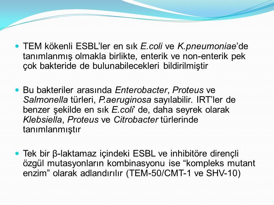 TEM kökenli ESBL'ler en sık E. coli ve K