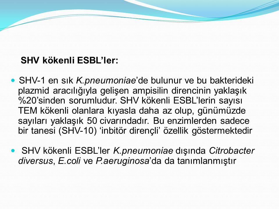 SHV kökenli ESBL'ler: SHV-1 en sık K.pneumoniae'de bulunur ve bu bakterideki. plazmid aracılığıyla gelişen ampisilin direncinin yaklaşık.