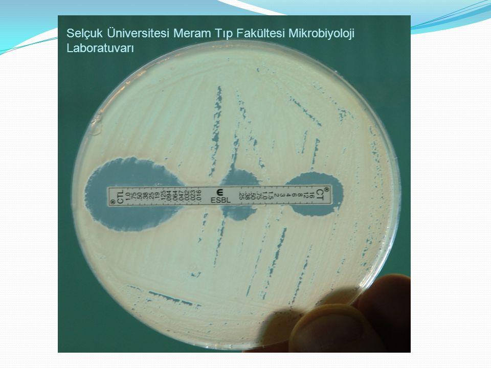 Selçuk Üniversitesi Meram Tıp Fakültesi Mikrobiyoloji Laboratuvarı