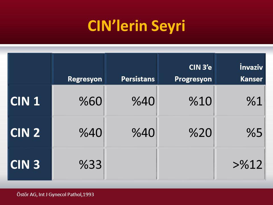 CIN'lerin Seyri CIN 1 %60 %40 %10 %1 CIN 2 %20 %5 CIN 3 %33 >%12