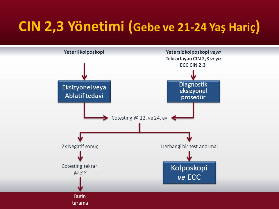 CIN 2,3 Yönetimi (Gebe ve 21-24 Yaş Hariç)