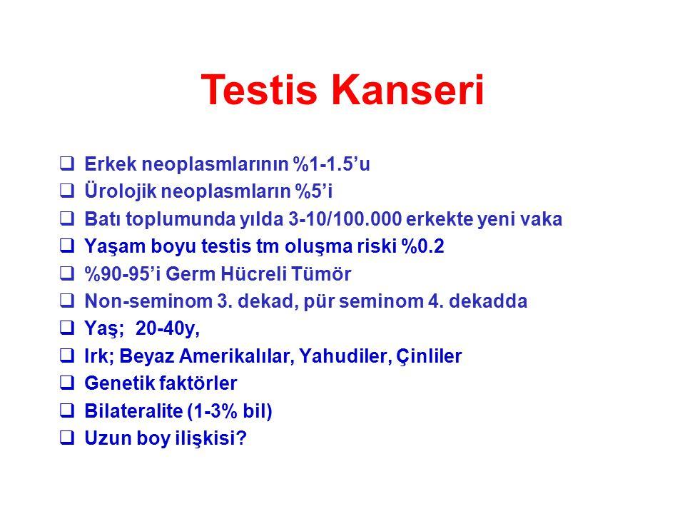 Testis Kanseri Erkek neoplasmlarının %1-1.5'u