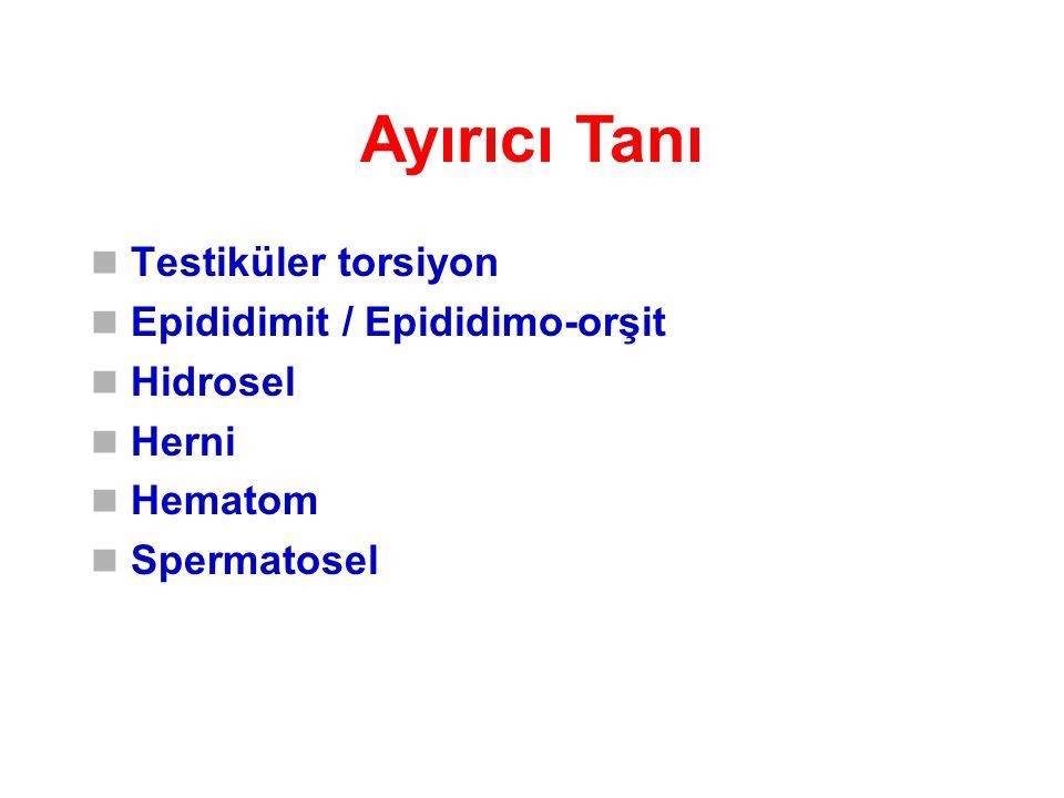 Ayırıcı Tanı Testiküler torsiyon Epididimit / Epididimo-orşit Hidrosel