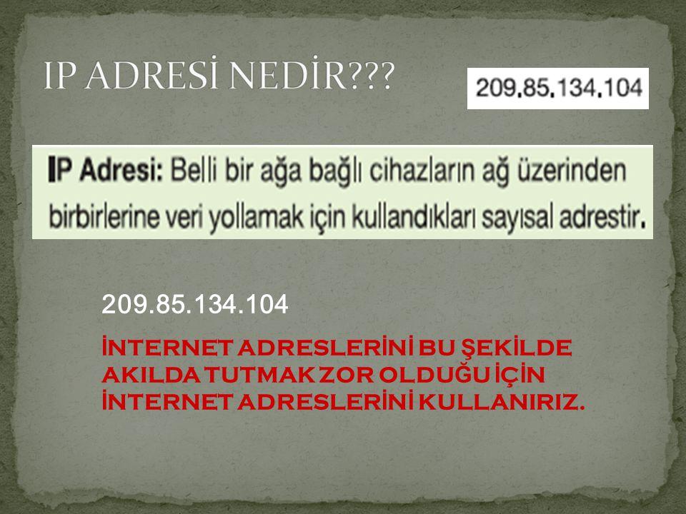 IP ADRESİ NEDİR . 209.85.134.104.
