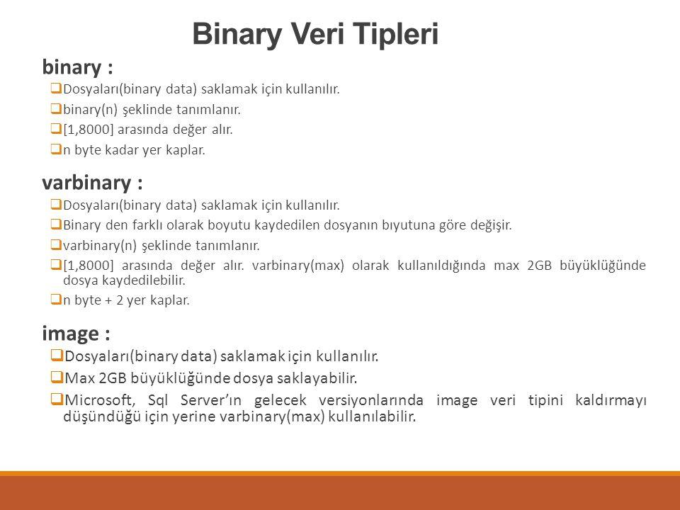 Binary Veri Tipleri binary : varbinary : image :