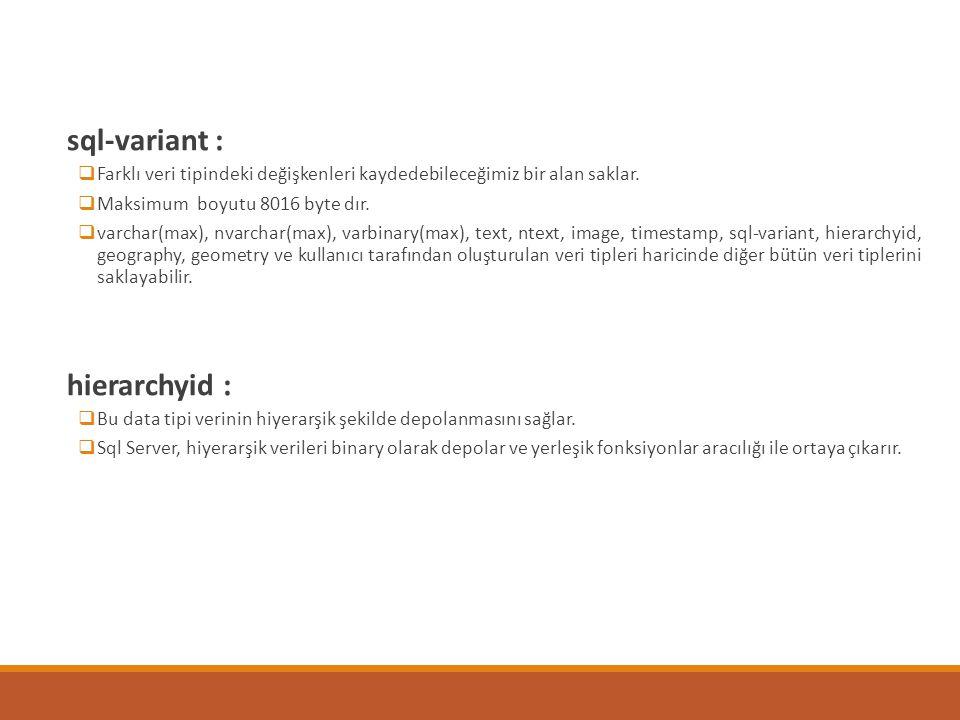 sql-variant : hierarchyid :