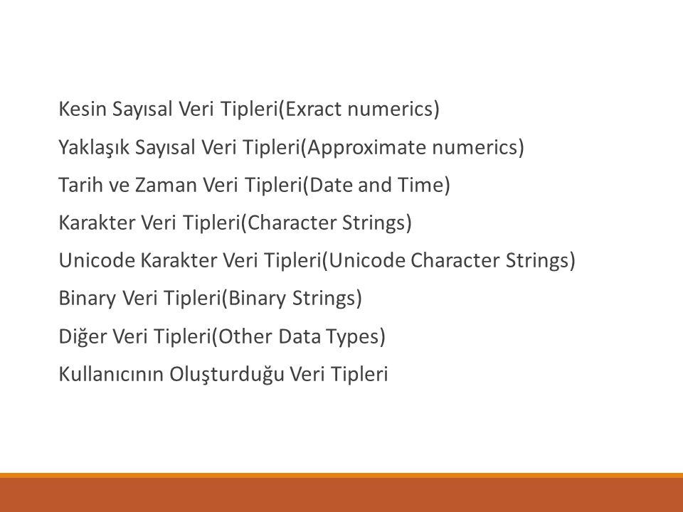 Kesin Sayısal Veri Tipleri(Exract numerics)