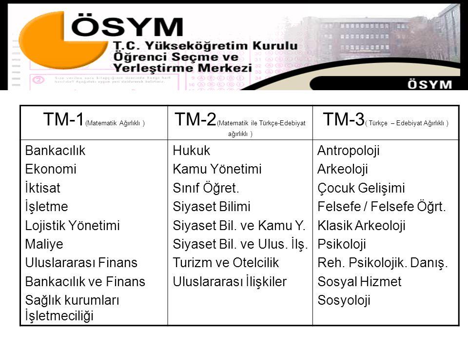 TM-1(Matematik Ağırlıklı )