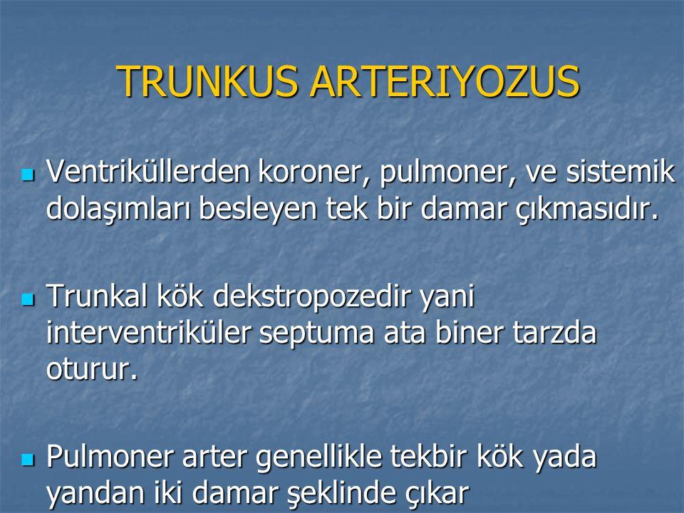 TRUNKUS ARTERIYOZUS Ventriküllerden koroner, pulmoner, ve sistemik dolaşımları besleyen tek bir damar çıkmasıdır.
