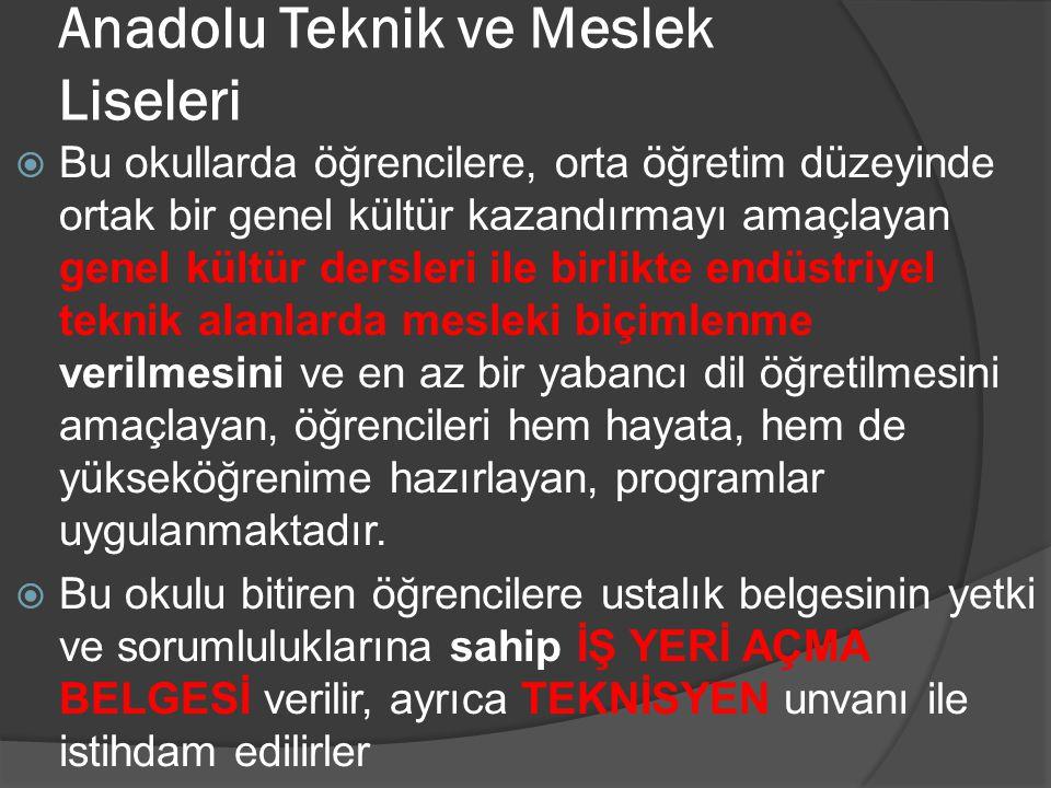 Anadolu Teknik ve Meslek Liseleri
