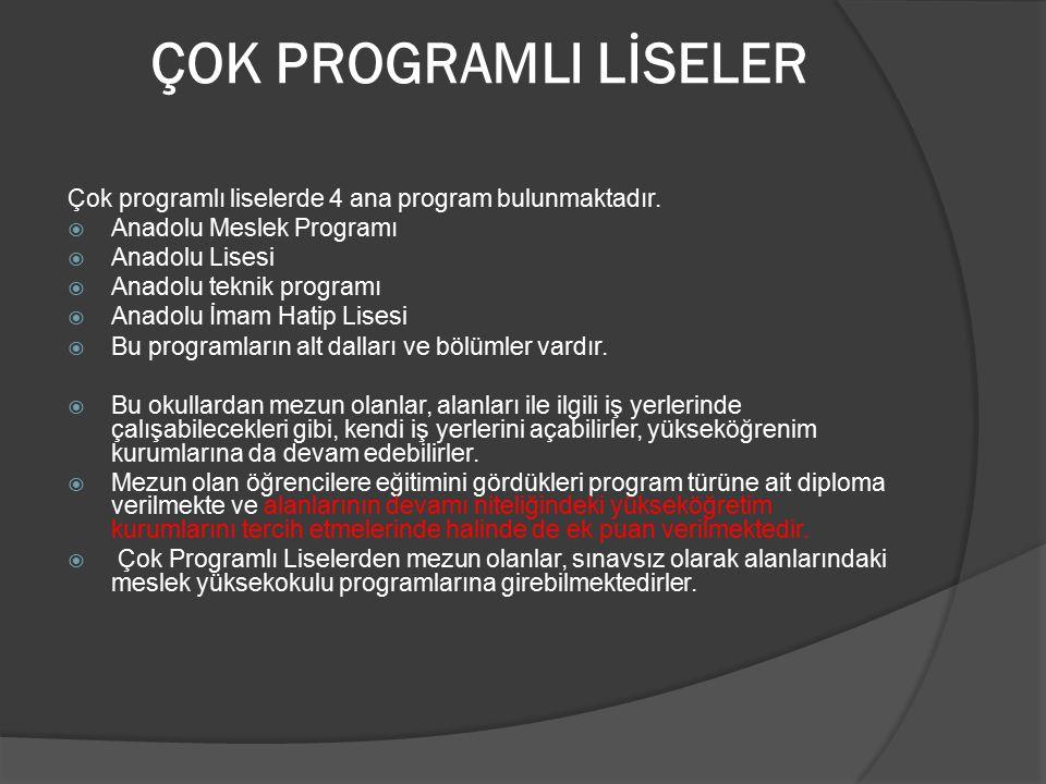 ÇOK PROGRAMLI LİSELER Çok programlı liselerde 4 ana program bulunmaktadır. Anadolu Meslek Programı.