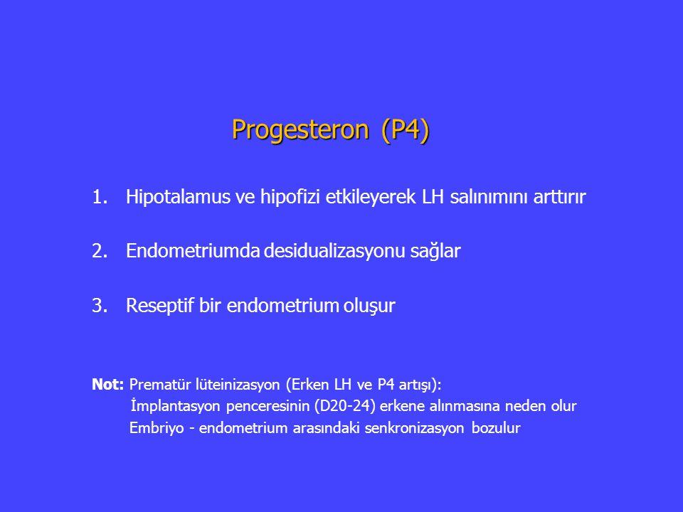 Progesteron (P4) Hipotalamus ve hipofizi etkileyerek LH salınımını arttırır. Endometriumda desidualizasyonu sağlar.