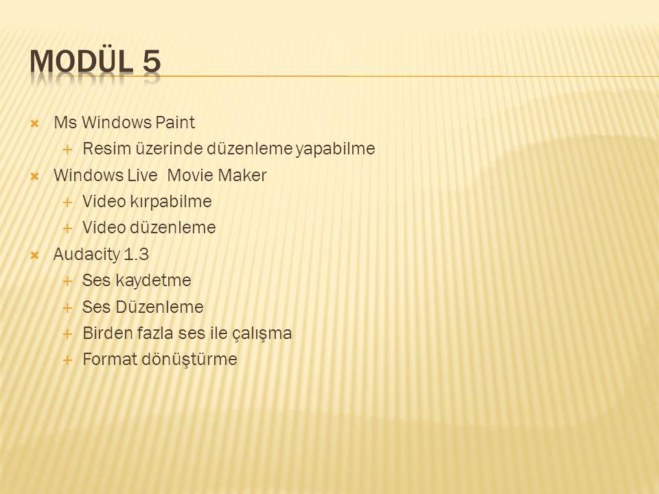 Modül 5 Ms Windows Paint Resim üzerinde düzenleme yapabilme