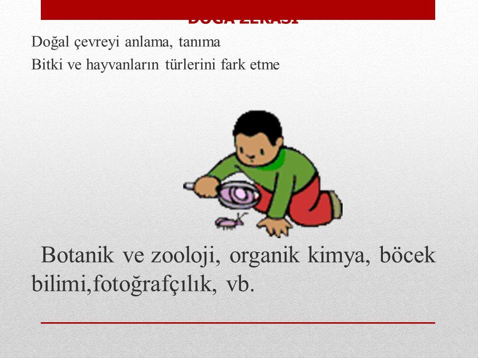 Botanik ve zooloji, organik kimya, böcek bilimi,fotoğrafçılık, vb.