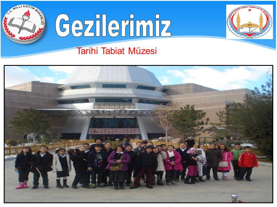 Gezilerimiz Tarihi Tabiat Müzesi