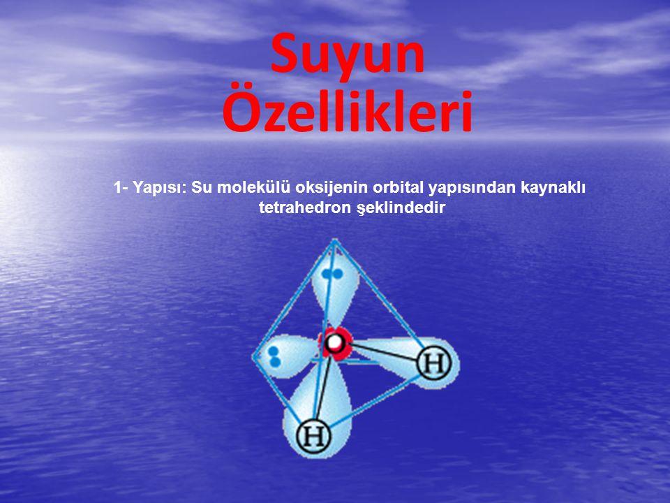 Suyun Özellikleri. 1- Yapısı: Su molekülü oksijenin orbital yapısından kaynaklı.