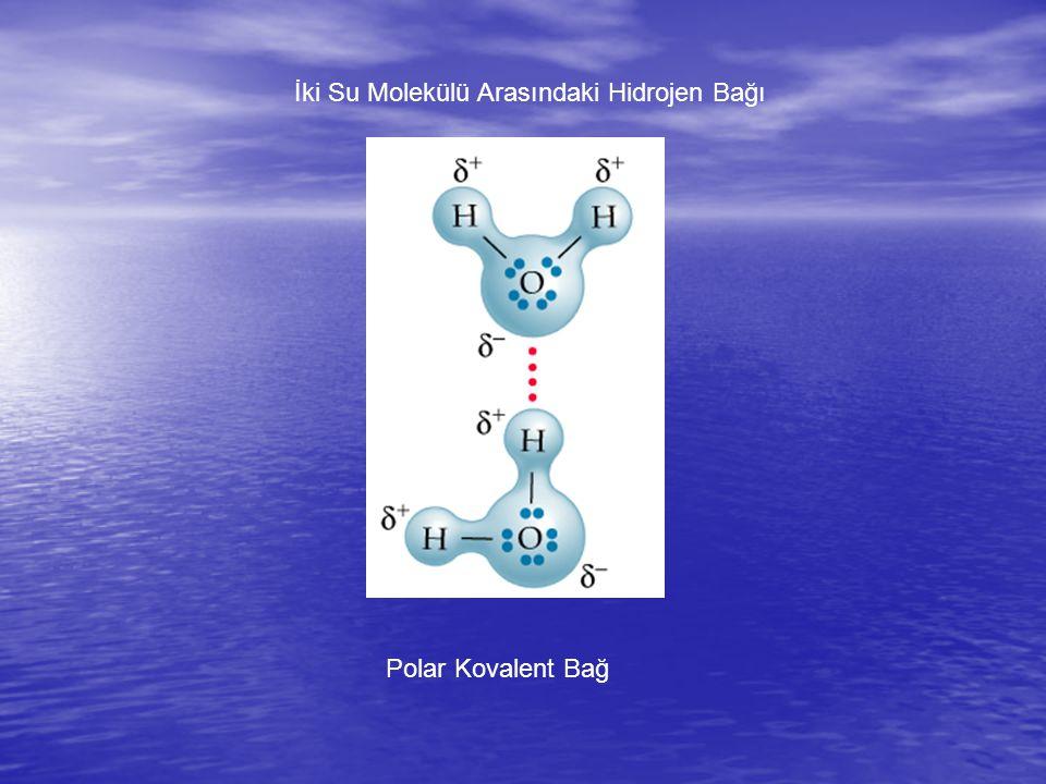 İki Su Molekülü Arasındaki Hidrojen Bağı