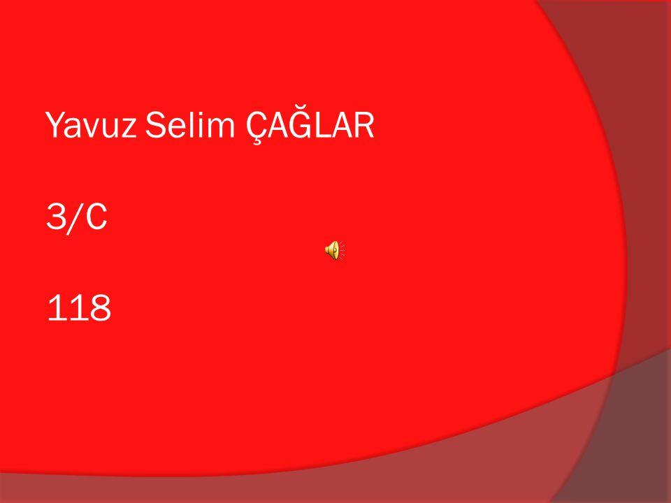 Yavuz Selim ÇAĞLAR 3/C 118