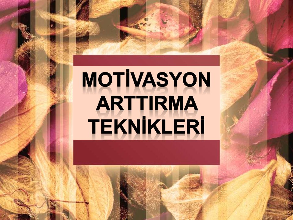 MOTİVASYON ArttIrma TEKNİKLERİ