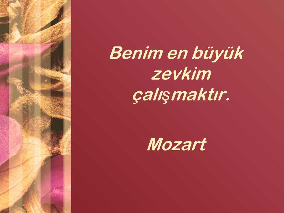 Benim en büyük zevkim çalışmaktır. Mozart