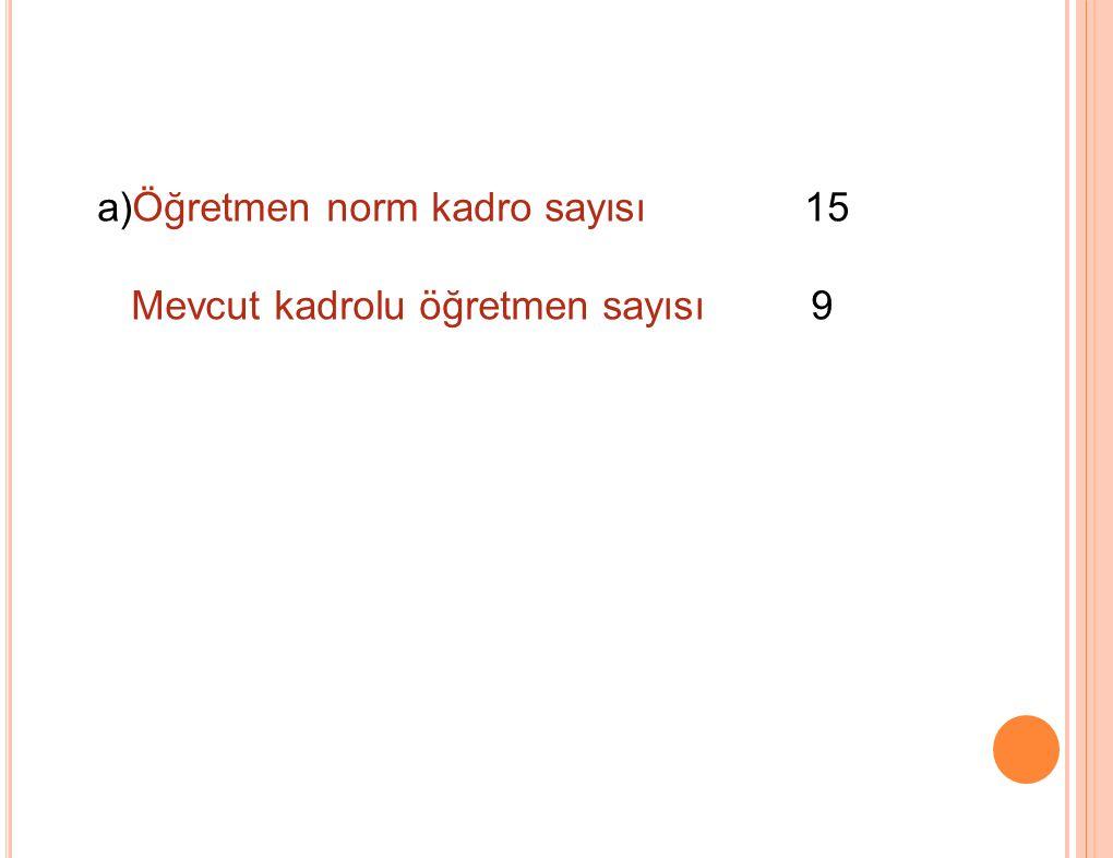 a)Öğretmen norm kadro sayısı 15