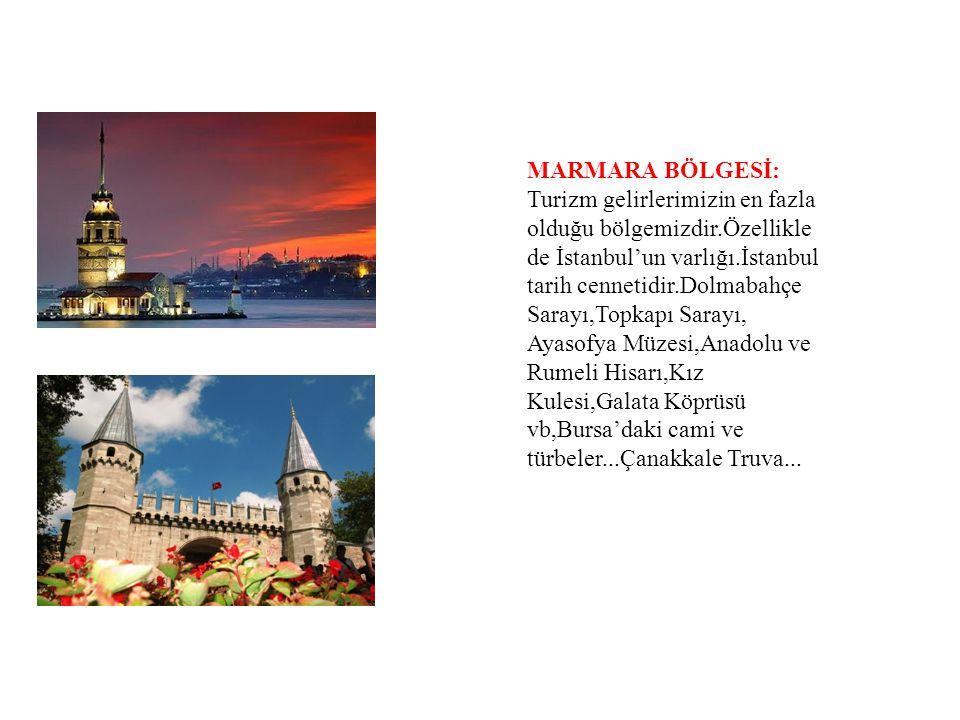 MARMARA BÖLGESİ: Turizm gelirlerimizin en fazla olduğu bölgemizdir