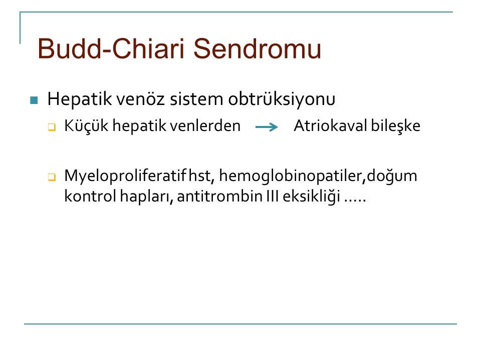 Budd-Chiari Sendromu Hepatik venöz sistem obtrüksiyonu