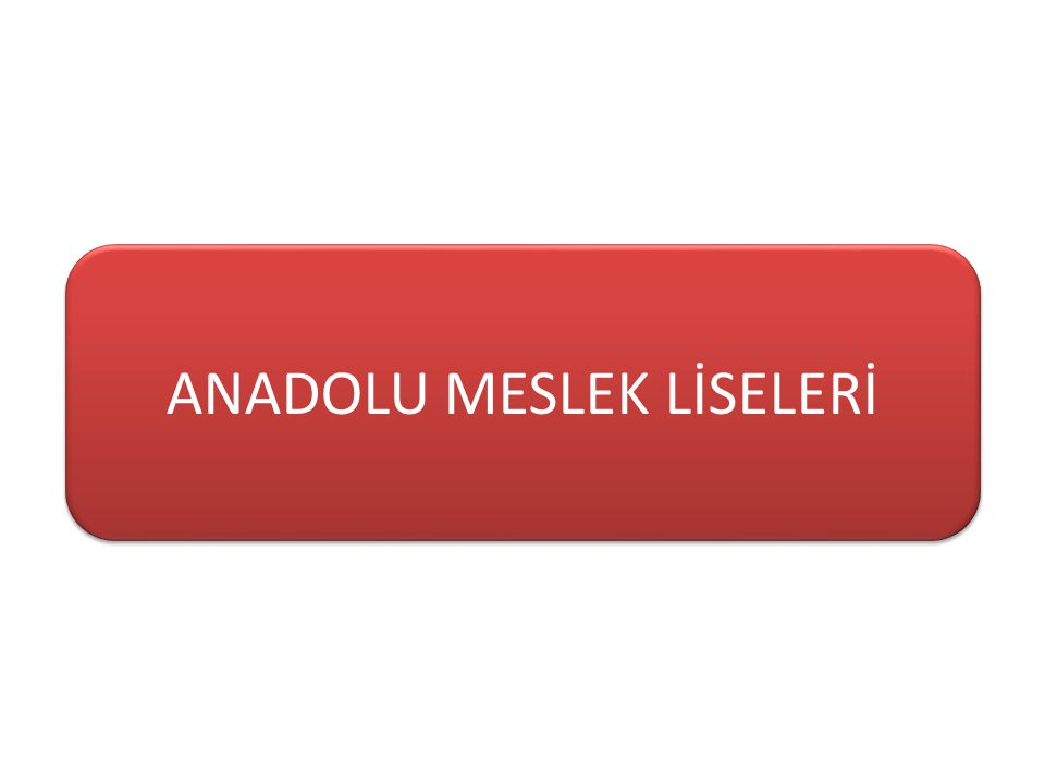 ANADOLU MESLEK LİSELERİ