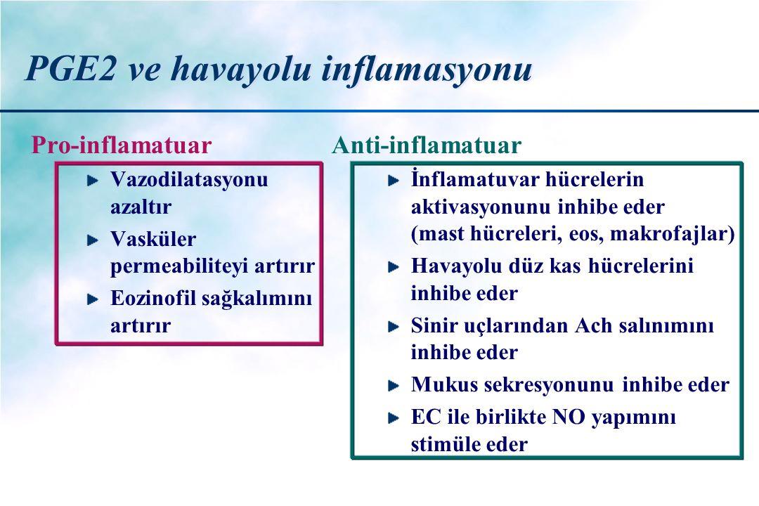 PGE2 ve havayolu inflamasyonu