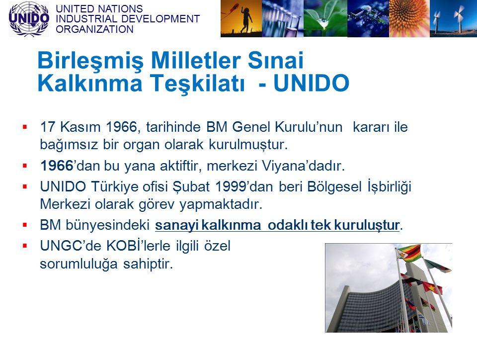 Birleşmiş Milletler Sınai Kalkınma Teşkilatı - UNIDO