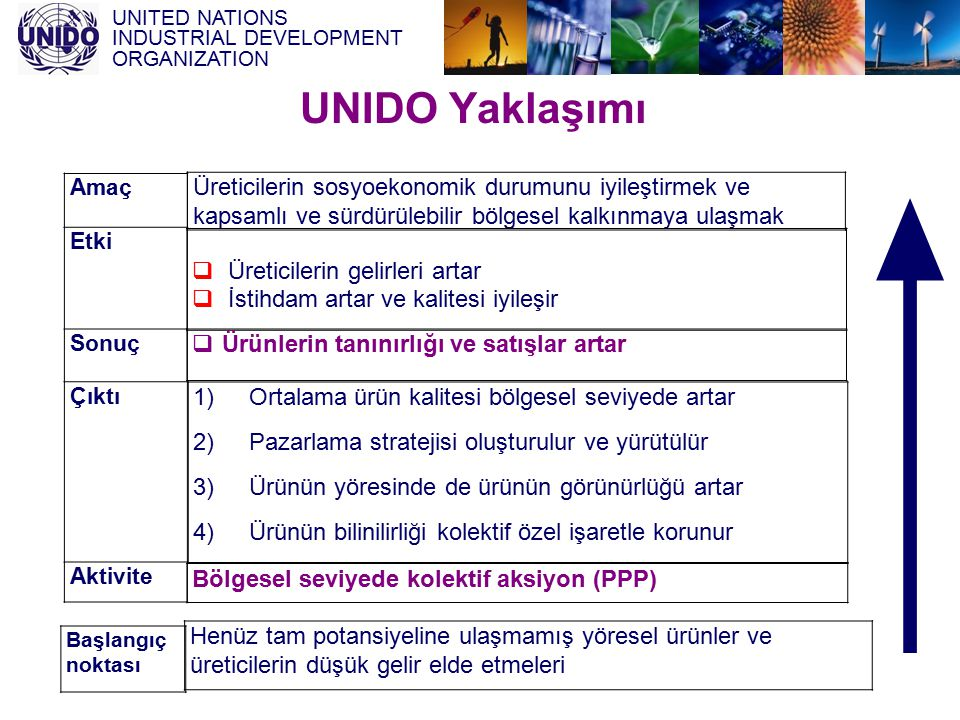 UNIDO Yaklaşımı Amaç. Etki. Sonuç. Çıktı. Aktivite.