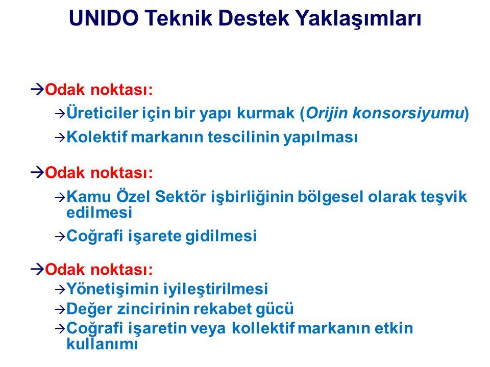 UNIDO Teknik Destek Yaklaşımları
