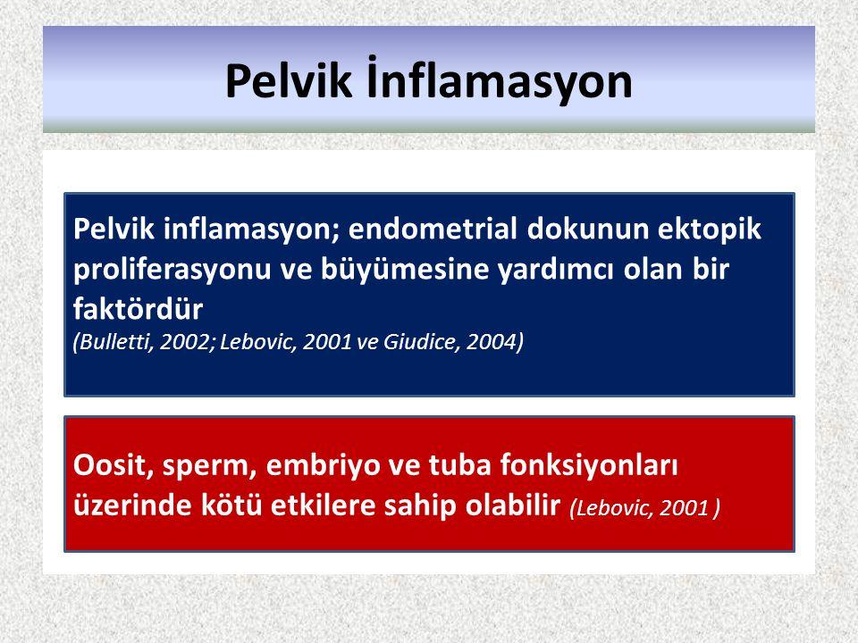 Pelvik İnflamasyon Pelvik inflamasyon; endometrial dokunun ektopik proliferasyonu ve büyümesine yardımcı olan bir faktördür.