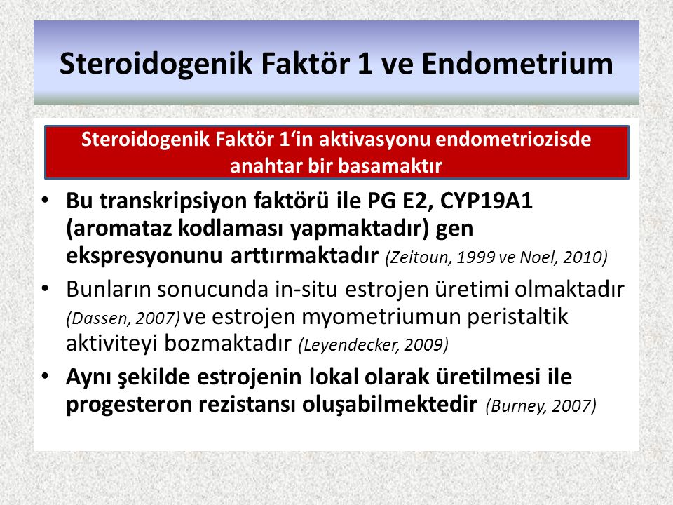 Steroidogenik Faktör 1 ve Endometrium