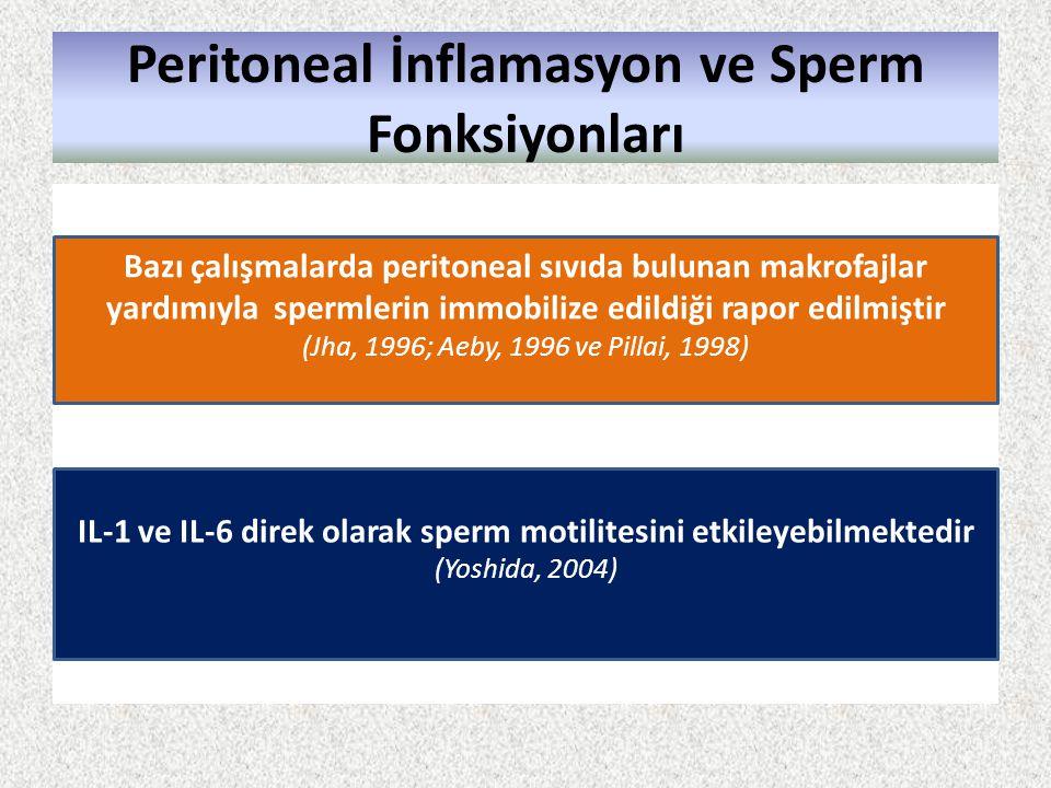 Peritoneal İnflamasyon ve Sperm Fonksiyonları